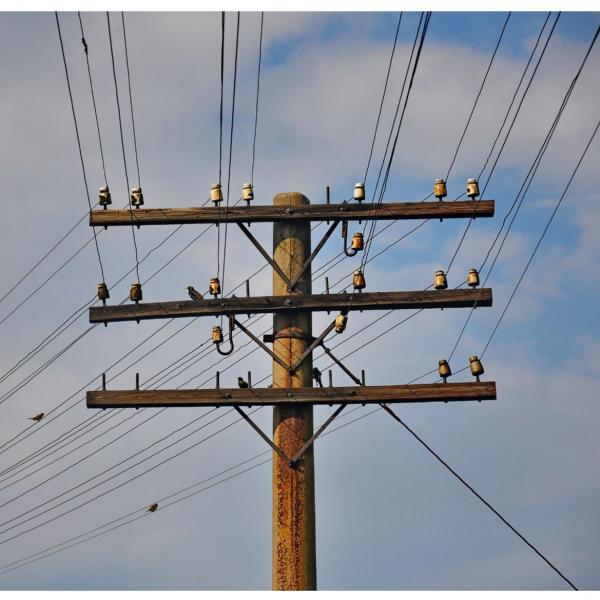 Fergus Electric Cooperative, Inc